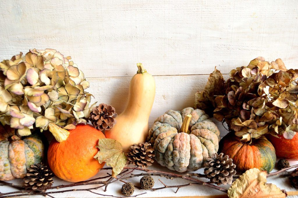 fall harvest festive decoration ideas for your home